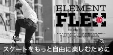 FLEX 17FW